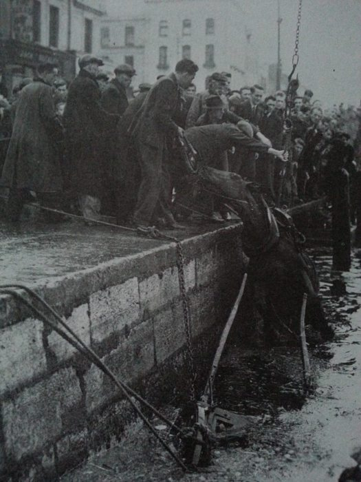 Rescuing a horse from the Lee, 1940s